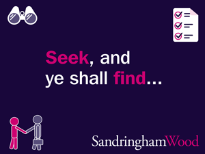 The recruitment search: where and how can you find your ideal candidates?